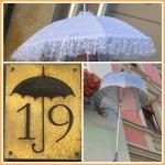 Schirmgeschäft