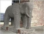 Elefantfantfant_0507