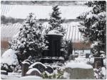 Friedhof_2253