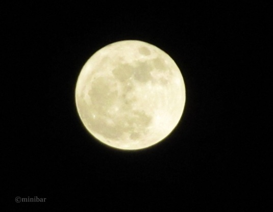 Vollmond_3496