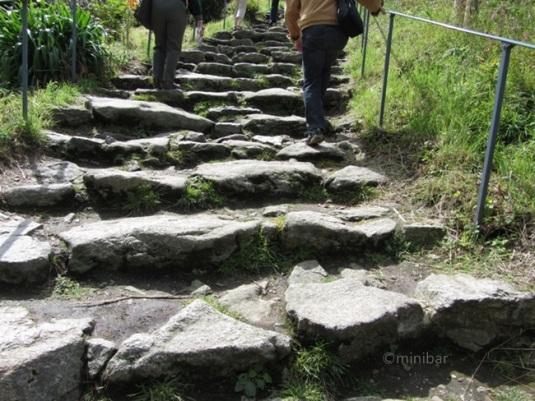 Pilgrims' Steps StMichale IMG_1060