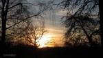 Abendsonne IMG_5777