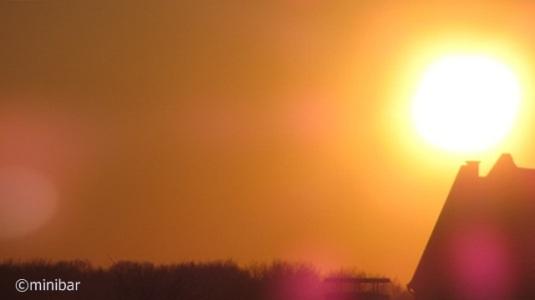 Abendsonne IMG_5970