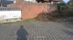 zurückmarschmarsch IMG_6351