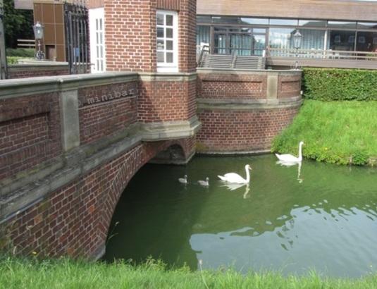 Brücke NordkIMG_1106