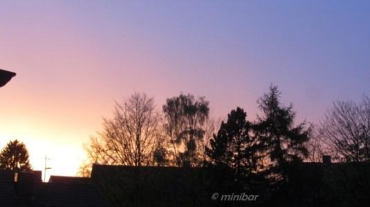 Abendsonne IMG_4164Wester