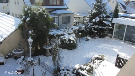 Schneegarten IMG_5527Wester13