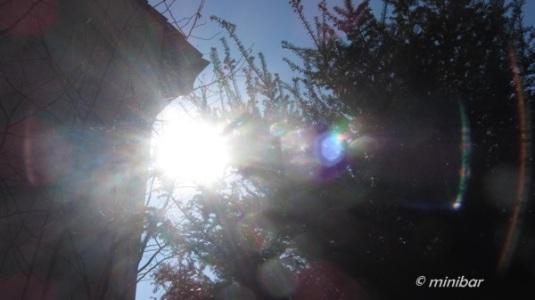 Sonne 6050