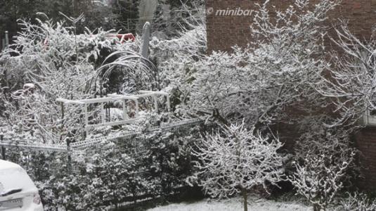 Schnee 21.3.2013IMG_6259Wester13