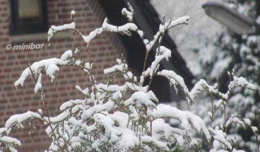 21.3.2013 Schnee 6262