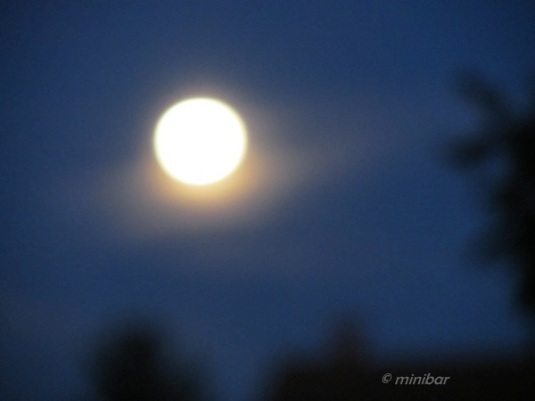 NIerstein Mond