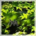 logo_magicmonday200px