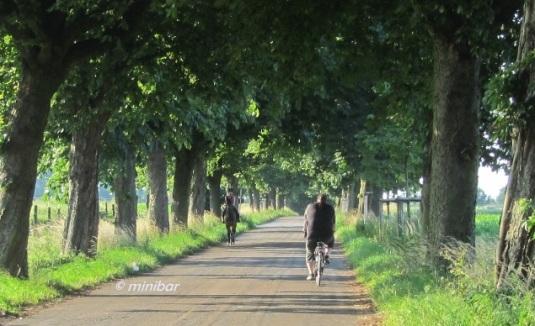 8547 Reiterin/Radfahrer