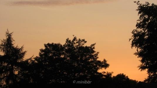 8657 Sonnenuntergagn