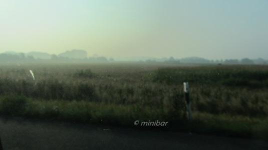 IMG_9731Senden Nebel