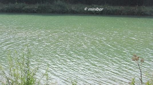 IMG_9747Senden Kanal