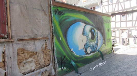 Auge LimbIMG_9823