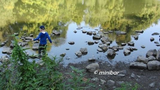 LimbIMG_9832