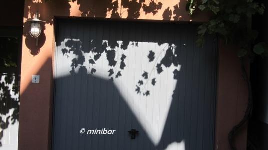 LimbIMG_9867 Blätterschatten