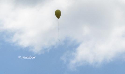 FFM 7653 Luftballon