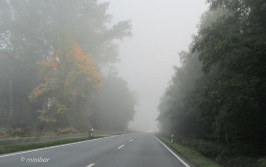 IMG_0383Sen13 Nebel