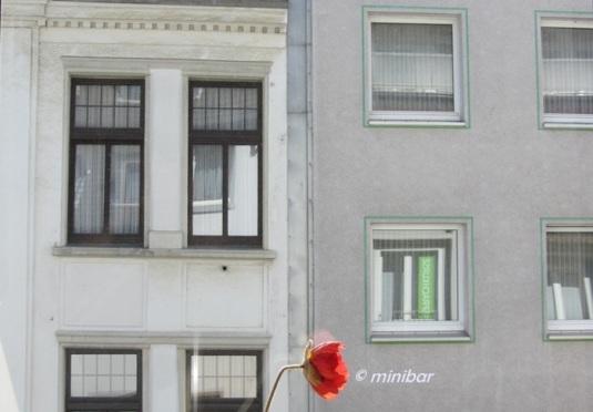 9801 RE Fenster