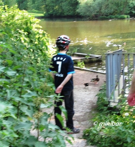 IMG_8565 Fahrrad-Helm