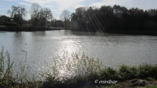 IMG_0595Sen13 Kanal