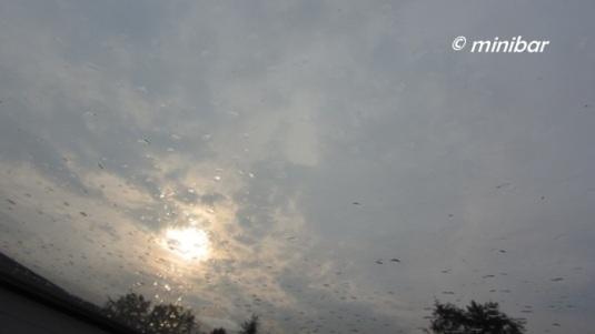 1362 Regen