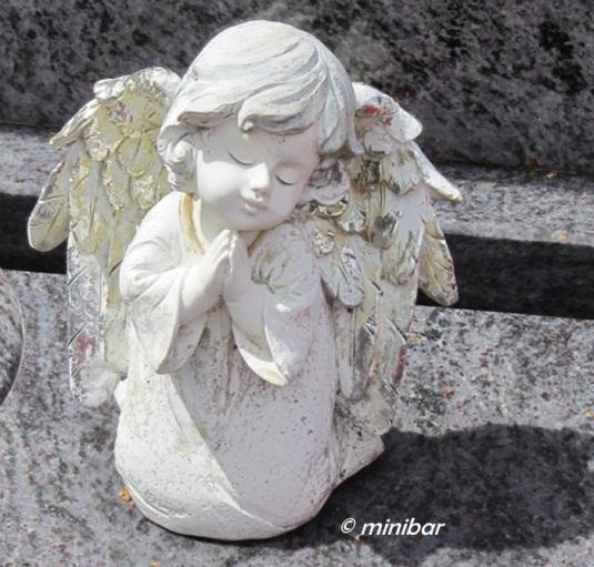 angel DorfenIMG_9393