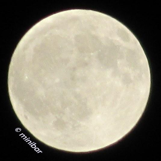 IMG_3421Sen14 Mond
