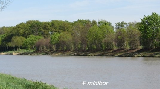 IMG_3441Sen14 Kanal