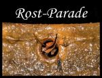 logo rostparade_
