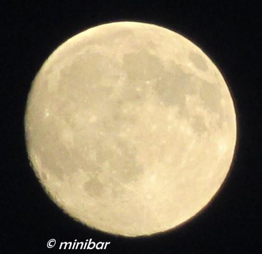 IMG_4825Sen 06.14 Vollmond