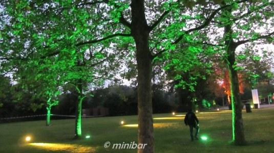 IMG_6143Sendener Lichter2014 3008
