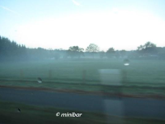 IMG_7919Sen 14 10