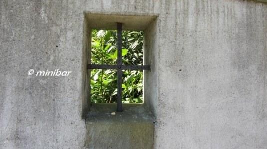 Fenster IMG_3827RE