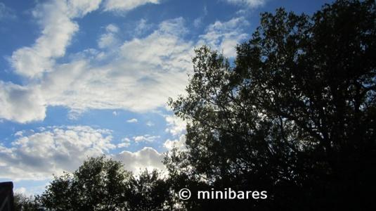 IMG_9604Sen 05 15