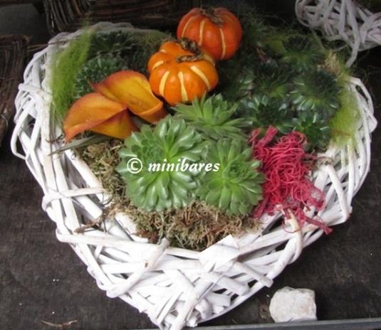 Herz Nov2011IMG_4711