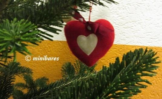 Herz Nov2011IMG_5138