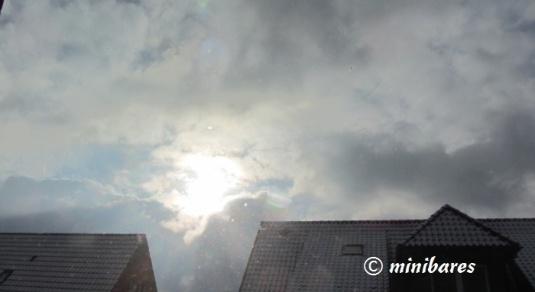 IMG_1470Sen 01 16