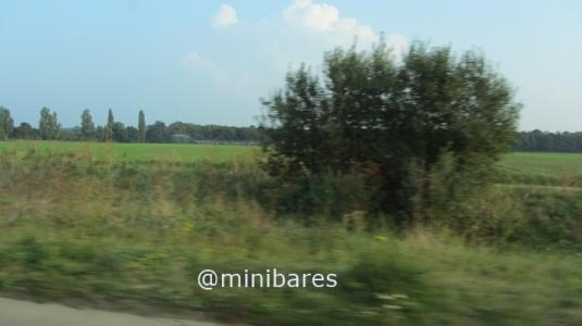 IMG_7230EA 2014  09